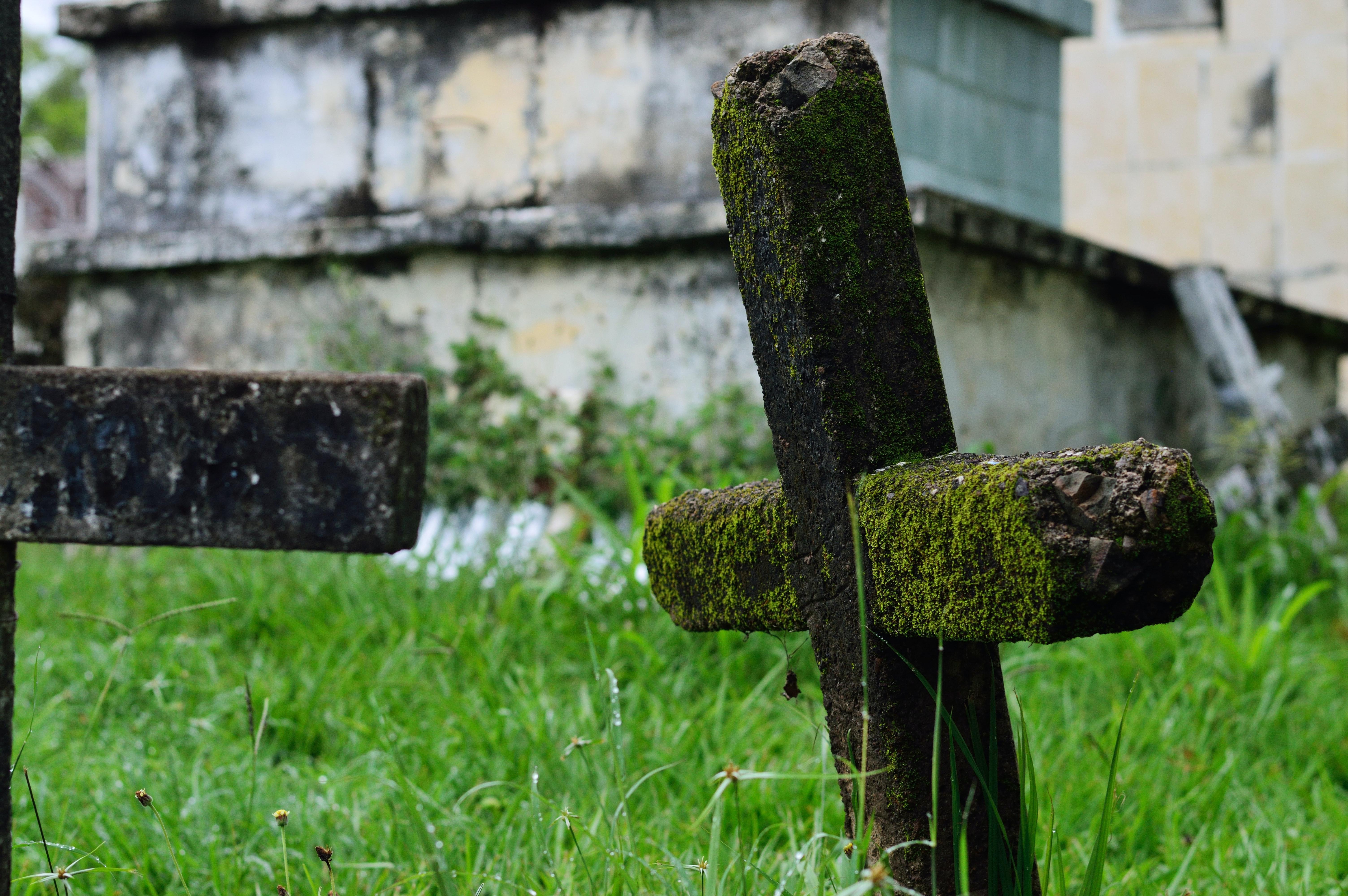 ¿Cómo elegir un servicio funerario?